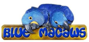 blumacaws